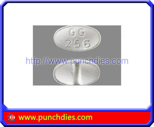 GG256 pill press dies set
