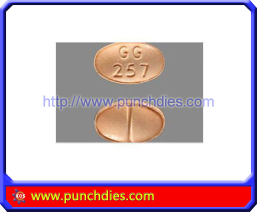 GG257 pill press dies set